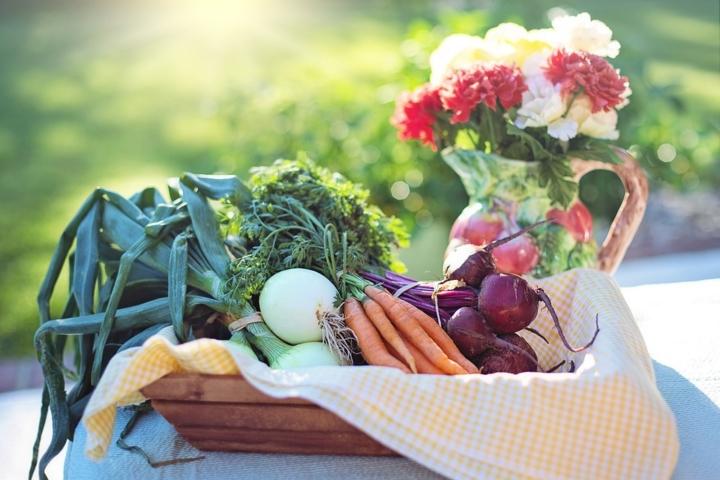 Koje namirnice su zdrave?