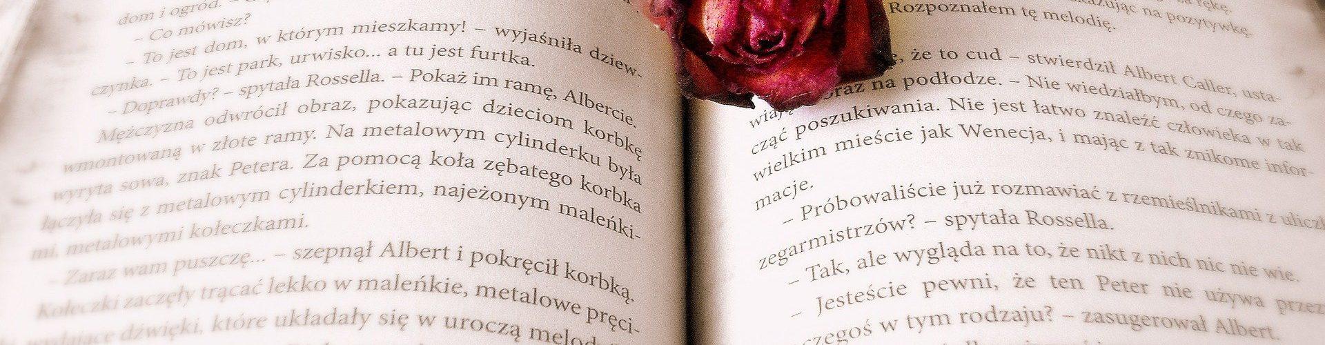 """U novembru čitajte Floberov ,,Novembar"""""""