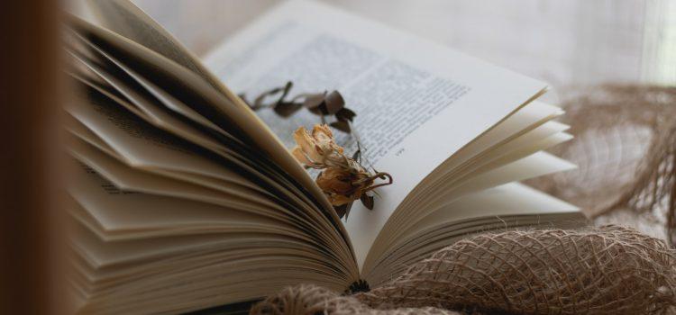 Čitamo: Zašto treba pročitati Treću alternativu?