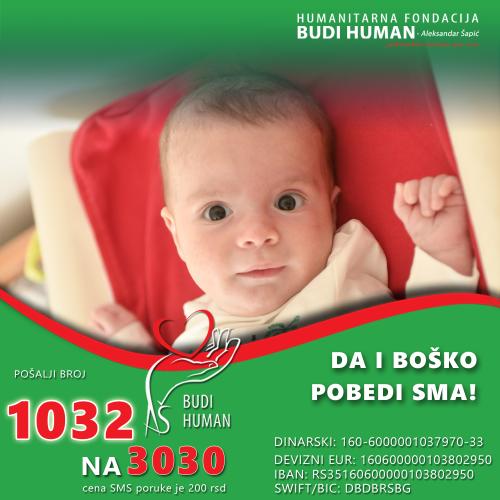 Humanitarni bazar u nedelju za bebu Boska u Sremskim Karlovcima